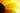 Extreme Nahaufnahme einer gelben Sonnenblumenbluete mit durscheinendem Sonnenlicht